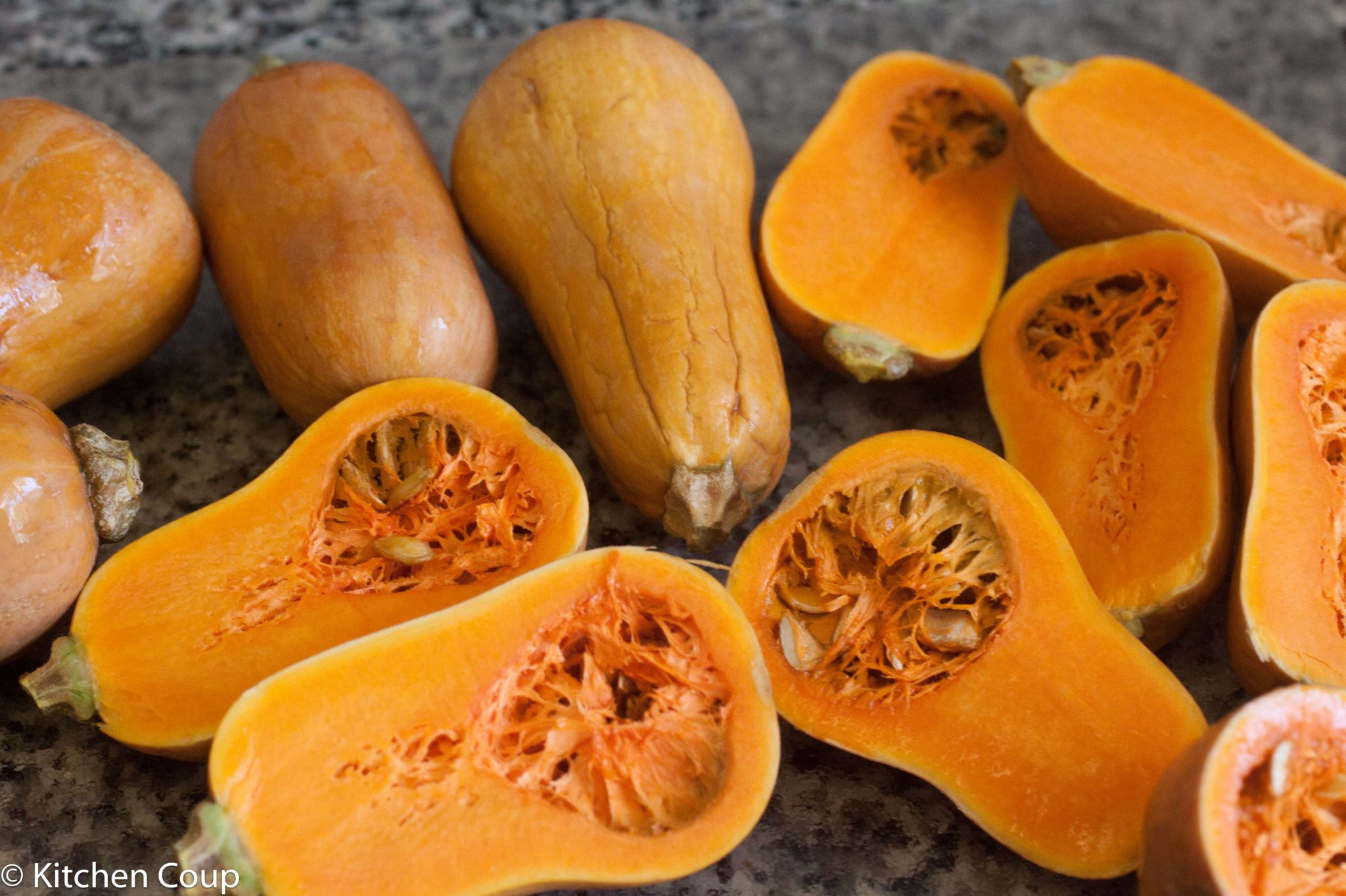 how to grow honey nut squash